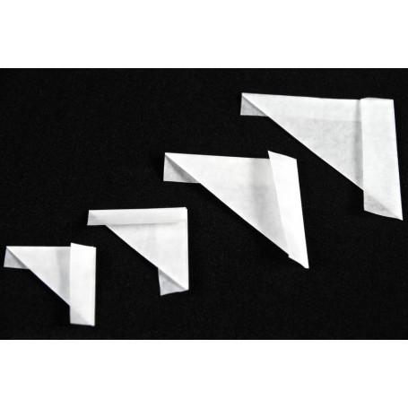 Papillottes ( x100 )