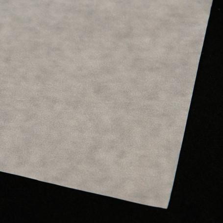 Papier Cristal ( x10 feuilles )